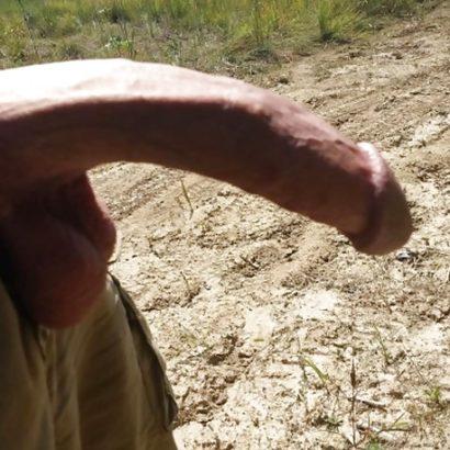 Monsterschwanz in der Natur