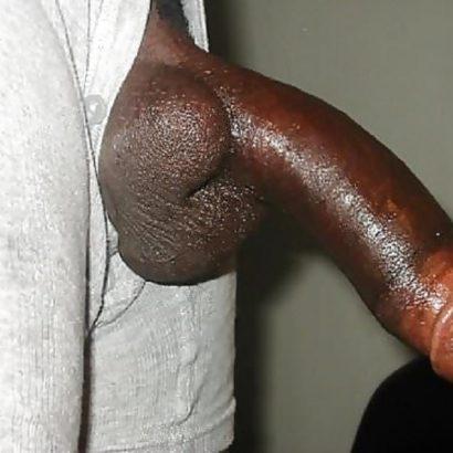 Öliger schwarzer Riesenpenis