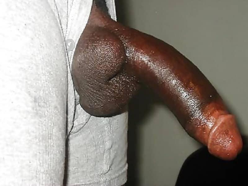 Riesenpenis