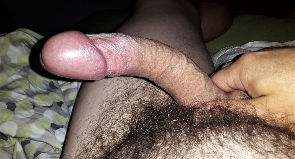 Haariger Penis