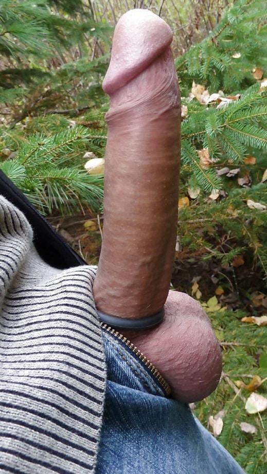 Männerschwänze grosse Die besten
